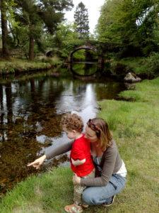 Micro adventure river fauna near Glendalough